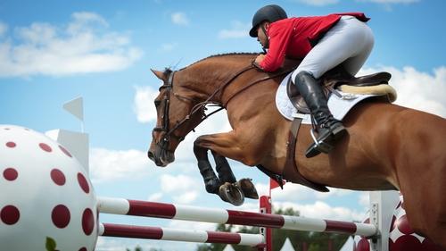 le saut d'obstacle à cheval