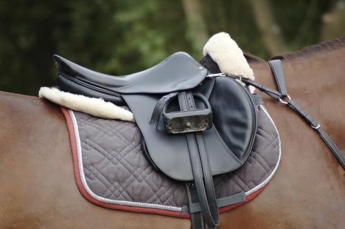 équipement nécessaire pour votre cheval